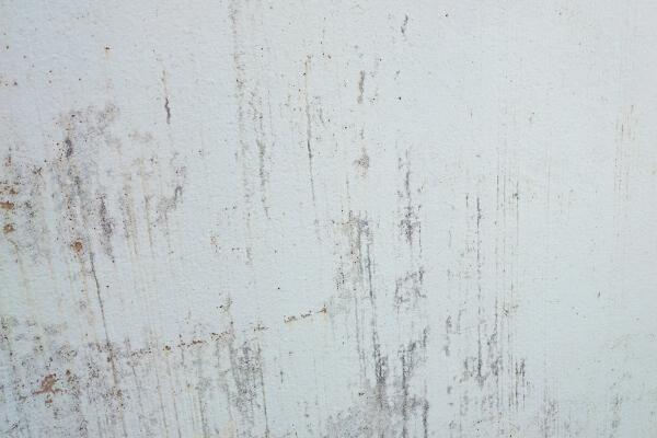 外壁 塗装